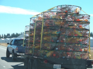Colorful crab pots going down the road