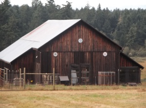 The barn that goes with that home