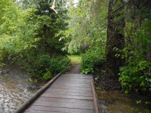 Day two, path over the creek to the cabins