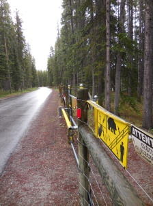 Electric fence to keep the grizzlies out of the tenting area of the Banff National Park Campground