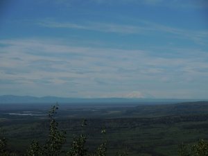 The typical view of Mt. McKinley