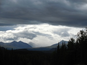 Rain in Denali National Park